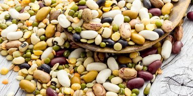 """Passover Part 2 - """"To Bean or Not to Bean?"""""""