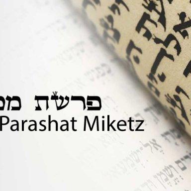T10 - Miketz - Genesis 41:1 - 44:17