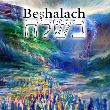 T16 - Beshalach - Exodus 13:17 - 17:16