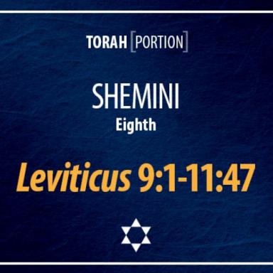 T26 - Shmini - Leviticus 9:1 - 11:47