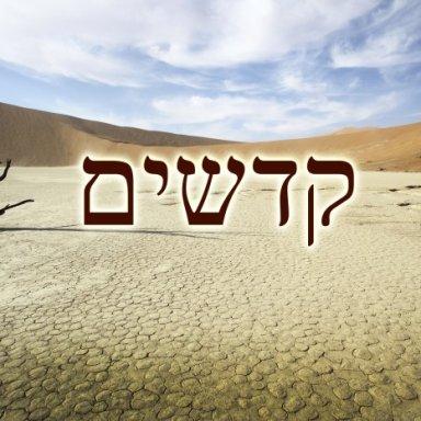 T30 - Kedoshim - Leviticus 19:1 - 20:27