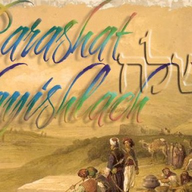 T8 - Haftarah - Hosea 11:7-12:12