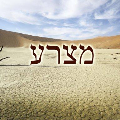 T28 - Metzorah - Leviticus 14:1 - 15:33